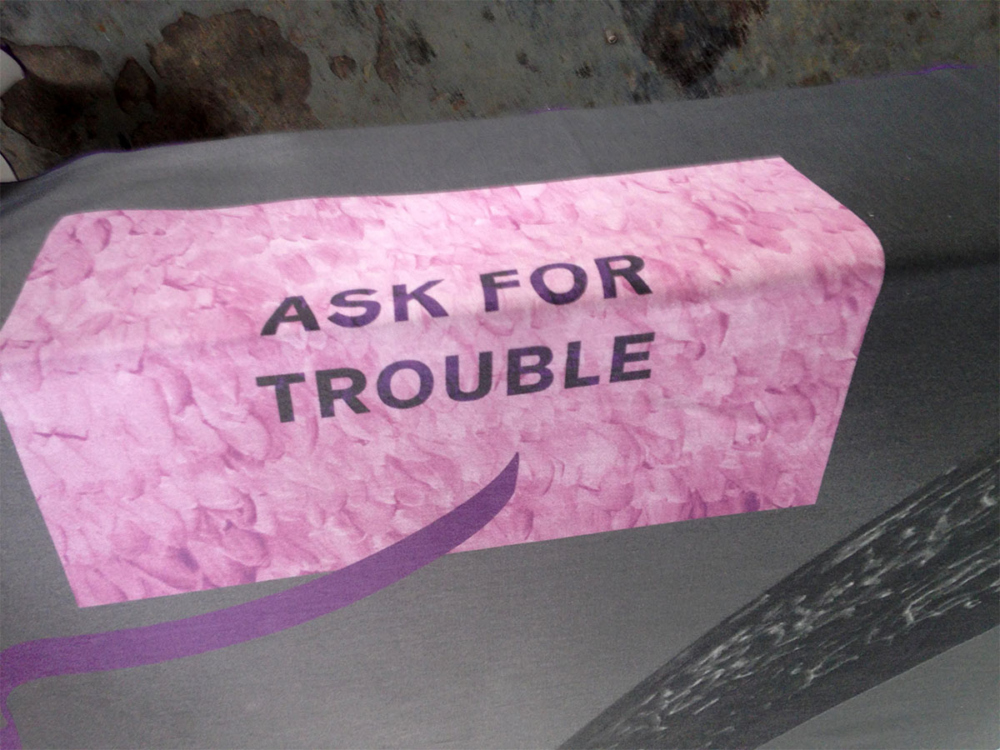 Ask for Trouble Painting — Maxime Bichon